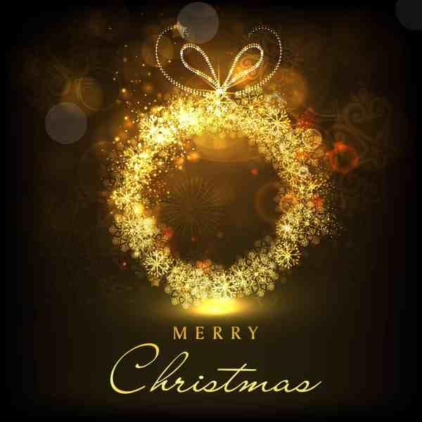 Merry Christmas from The Bohn Family