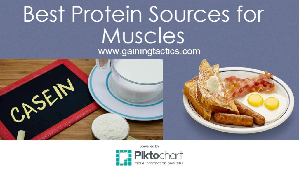 best protein sources for muscles