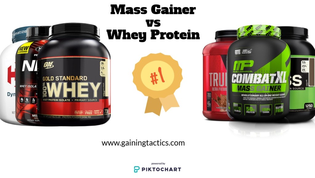 Mass Gainer vs Whey Protein: We Have a Winner