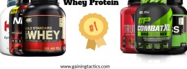 mass gainer vs whey protein
