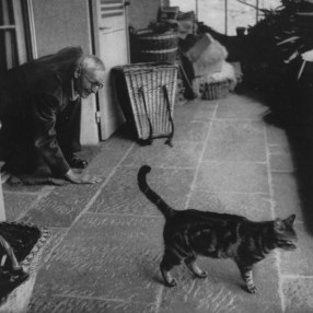 Hermann Hesse writersandkitties.tumblr.com