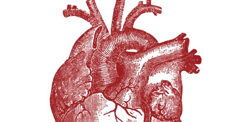 Día Internacional del Corazón, Ilustraciones con mucho| #HoyEsDíaDe
