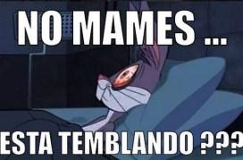 sismo04