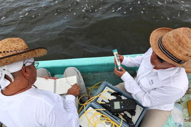 Los investigadores demás utilizaron instrumentos multiparámetros para medir: PH, Oxígeno disuelto, salinidad, temperatura y clorofila en el sitio, esas muestras se irán a un laboratorio para ser analizadas a detalle e identificar la presencia de plaguicidas y fertilizantes en la zona de Yucatán.