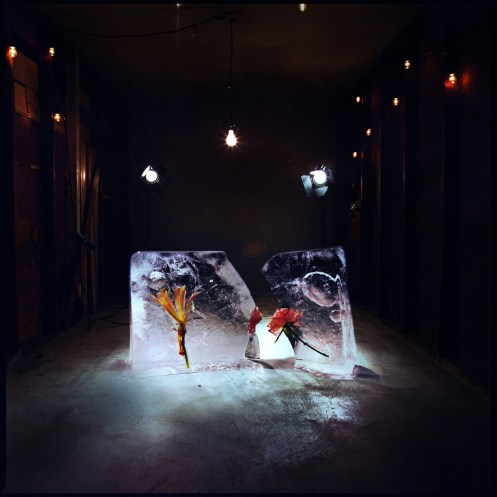 Ponle play: discos nuevos de Shy Girls, Starset y Grave Digger