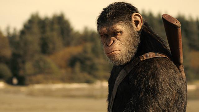 El planeta de los simios: la guerra: Al César lo que es del César