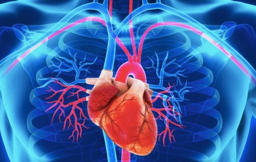 Parejas casadas comparten problemas cardiovasculares