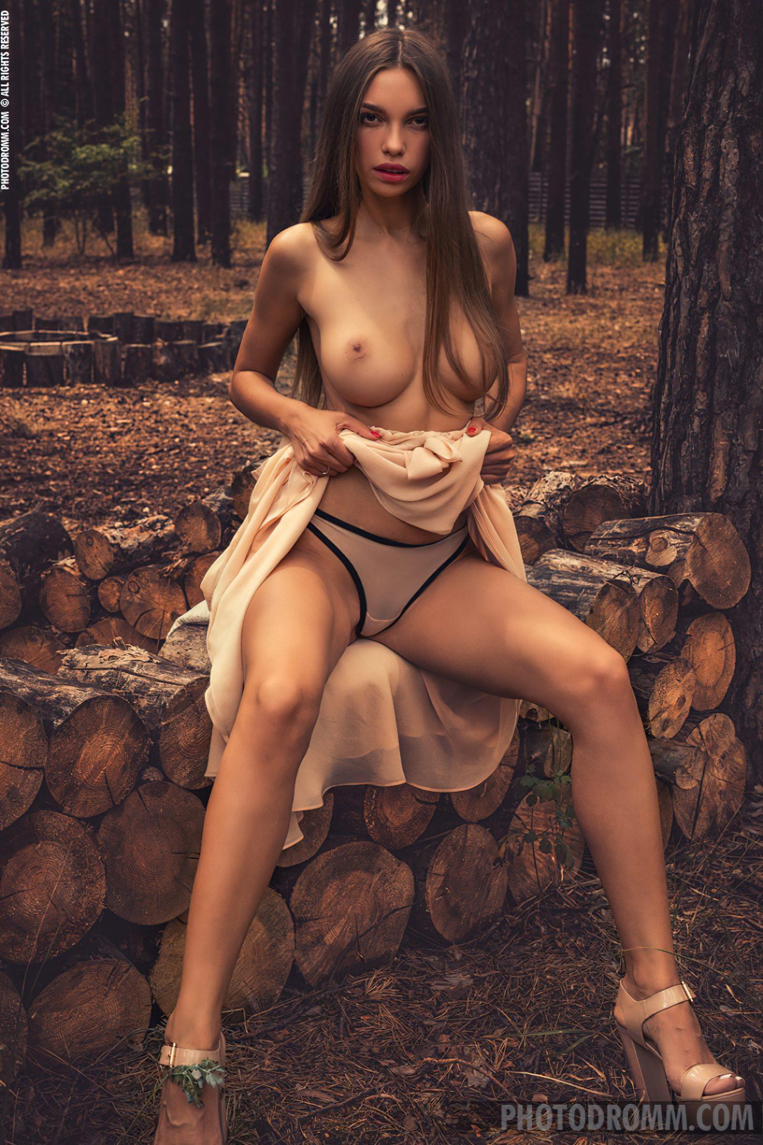 No Meio da Floresta (2)