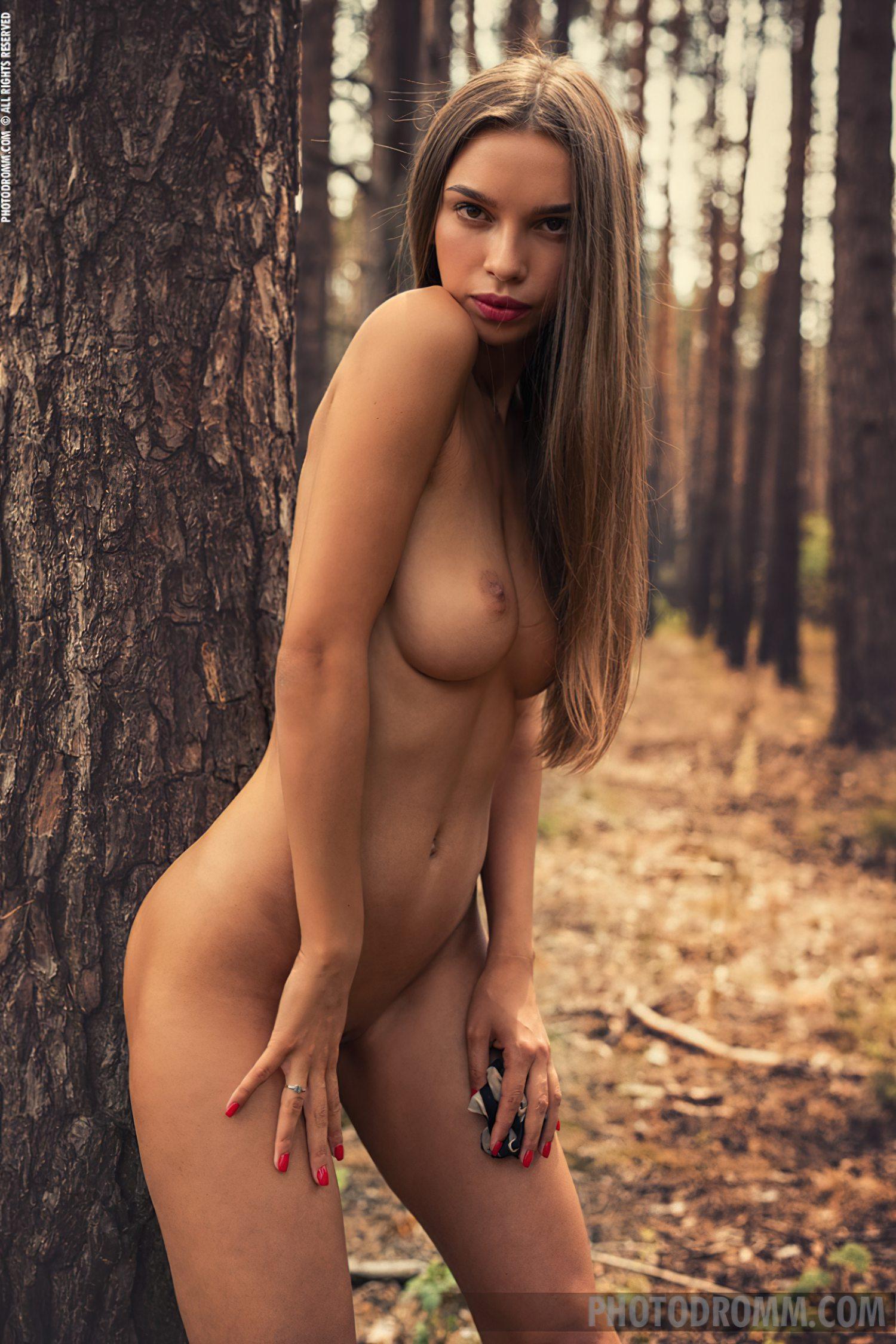 No Meio da Floresta (8)