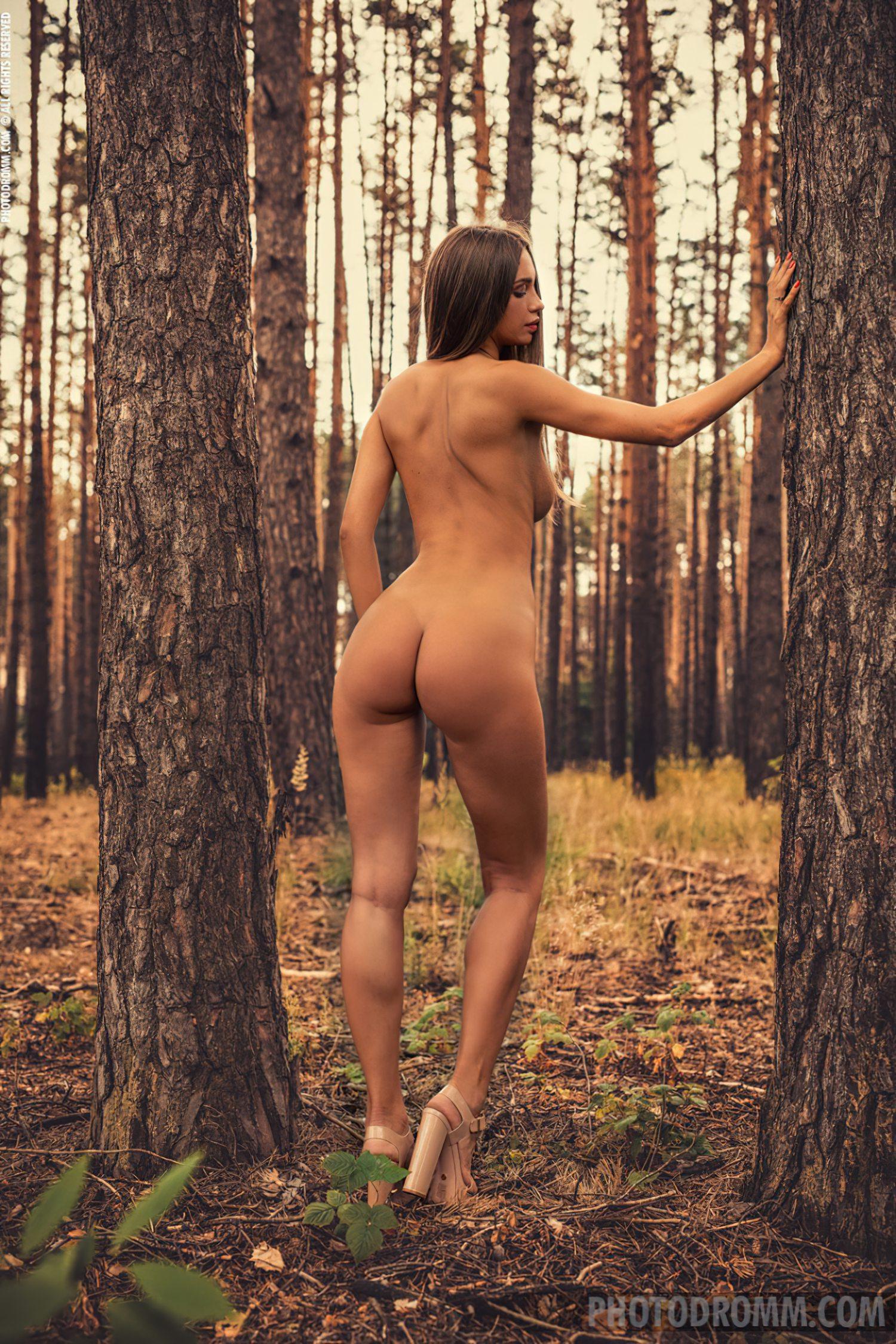 No Meio da Floresta (10)