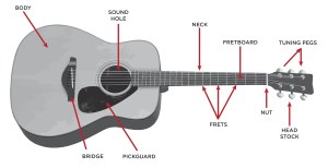 The Acoustic Guitar Step By Step Buying Guide  GAK BLOG