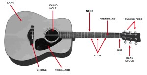The Acoustic Guitar Step By Step Buying Guide  GAK BLOG