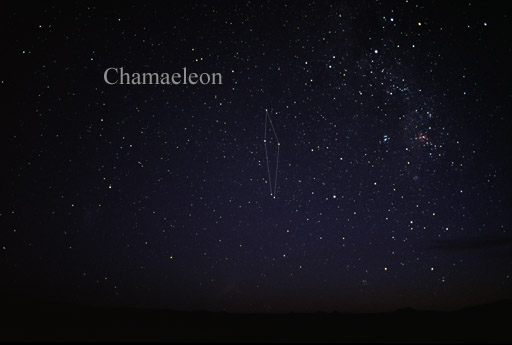 Хамелеон (созвездие)