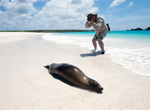 galapagos beaches