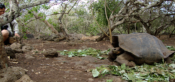 Galapagos National Park