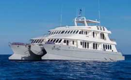Alia Catamaran Last Minute
