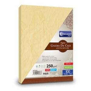 grains de cuir A4-100-3