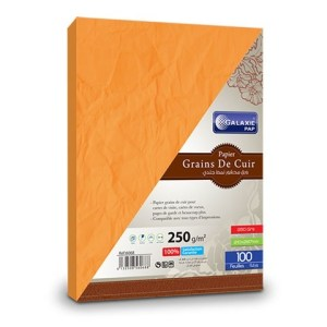grains de cuir A4-100-orange