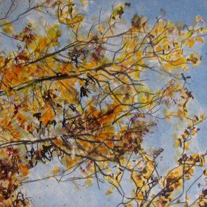 Soleil d'automne, peinture de Simon C.