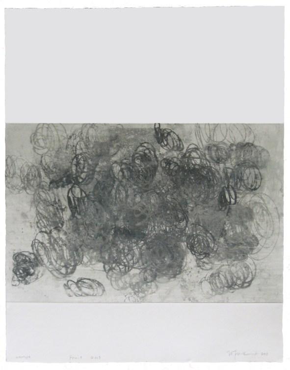Noriko Fuse, Fruit G013