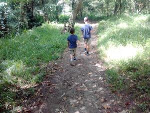 Sendas y rutas por Chelo (Paderne) / CDD
