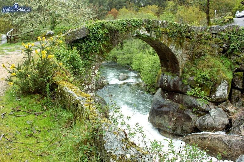 Puente Almofrei  | GALICIA MAXICA