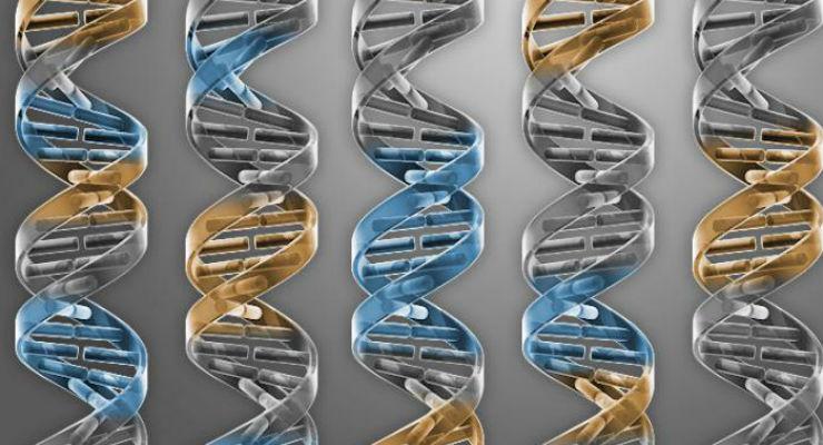 SCIENZA: mutazioni casuali del DNA tra le cause dei tumori