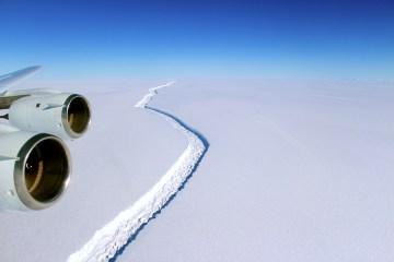 Larsen C, il gigantesco iceberg si è staccato