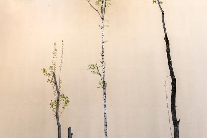 Janette Holmström, Galleria Huuto