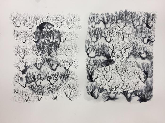 Eveliina Hämäläinen: JÄLKI, ink on paper, 31 x 40 cm, 2019