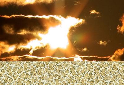 Heaven, videoinstallation/videoinstallaatio, 2005