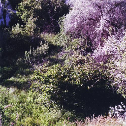 VN: Aukkoja maisemassa, 2012