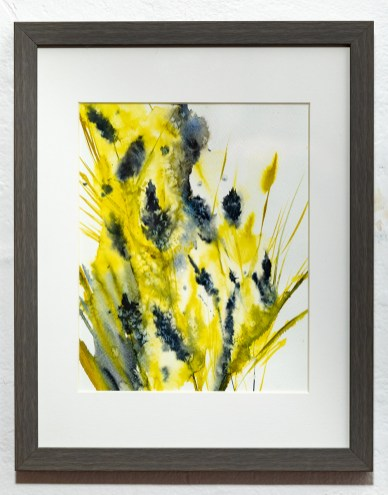 Aromatic Watercolor Matted & framed $150.00