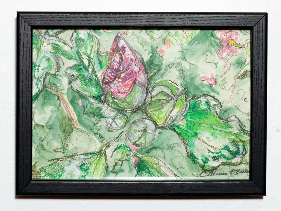 Buds, 2021 Oil pastel, watercolor & charcoal on paper $275.00
