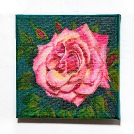 Pink Rose Acrylic on canvas $125.00