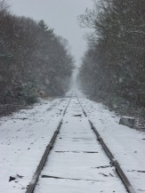"""Train Tracks"" by William Correia"