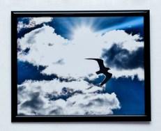 Angela Bariteau Piece of Sea in the Sky Photograph $150
