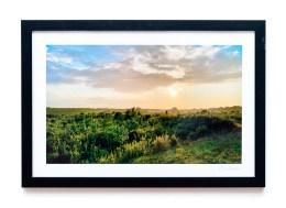 James Correia The Bogs Photograph $85