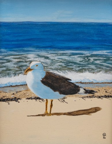 Tom Quinn Seagull Acrylic $250