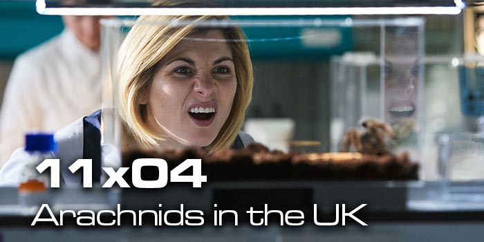 [Saison 11] Synopsis et images promotionnelles de l'épisode Arachnids in the UK