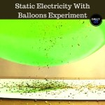 All the instructions, results and explanation you need on the static electricity with balloon experiments. Watch the pepper jump!
