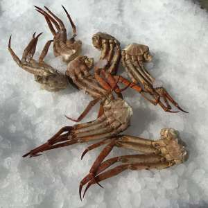 bocas y patas de cangrejo