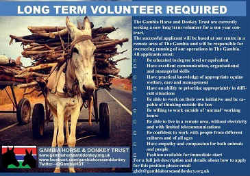 Gambia Horse And Donkey Trust Long Term Volunteer Required