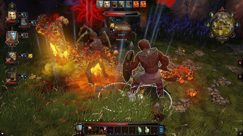 Divinity Original Sin screen 4