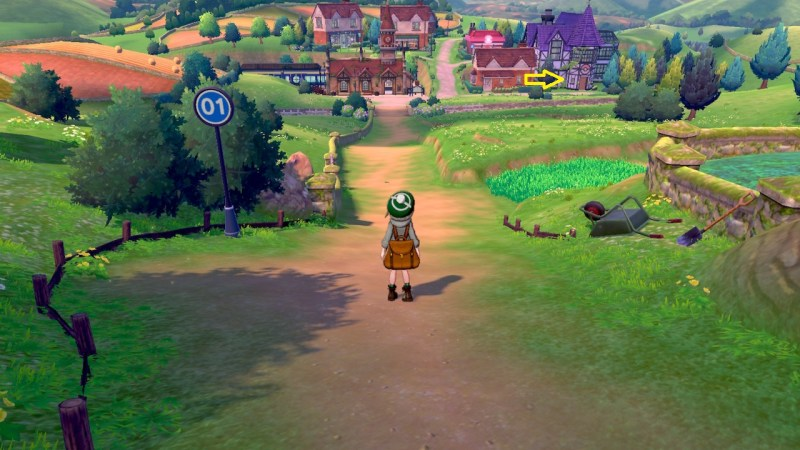 Solution de pokemon épée et bouclier, Route 1