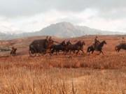 Red Dead Redemption 2 paard en wagen