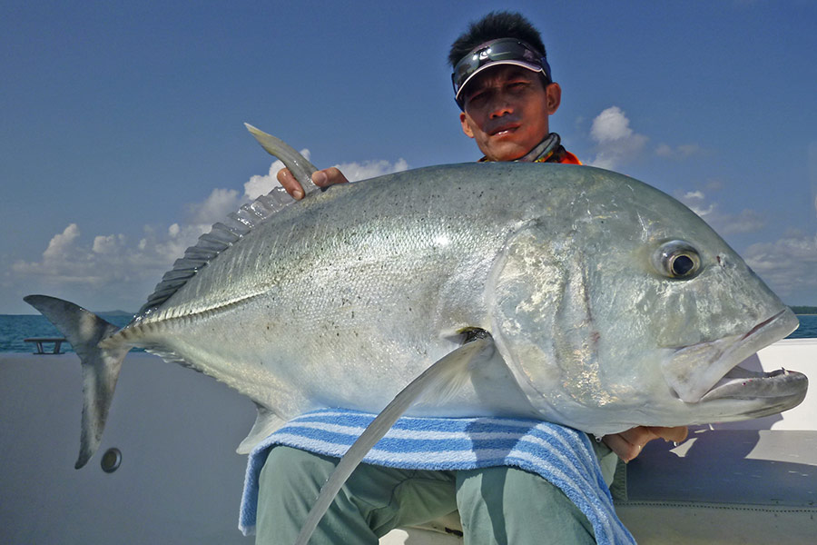 10_giant-trevally_popping_andamans_fishing_carpenter-rods_shimano-stella-reels_hammer-head-lures_koh-guan-chu