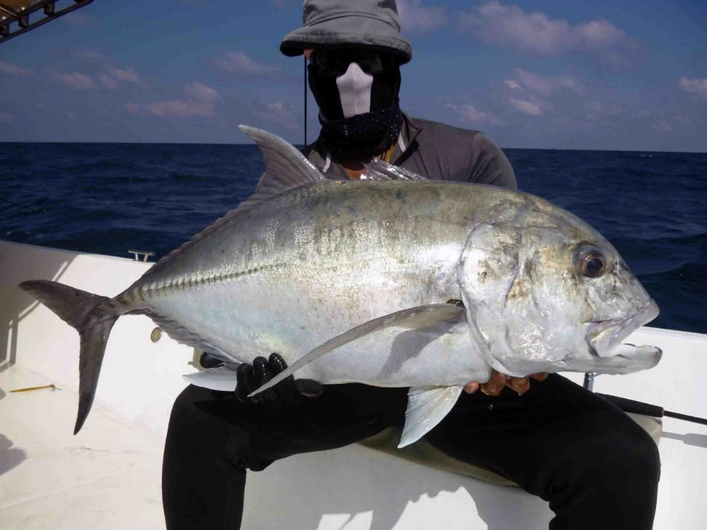 giant-trevally_popping_andaman_race-point-200-rods_shimano-stella-reels_kokari-popper_suresh-2