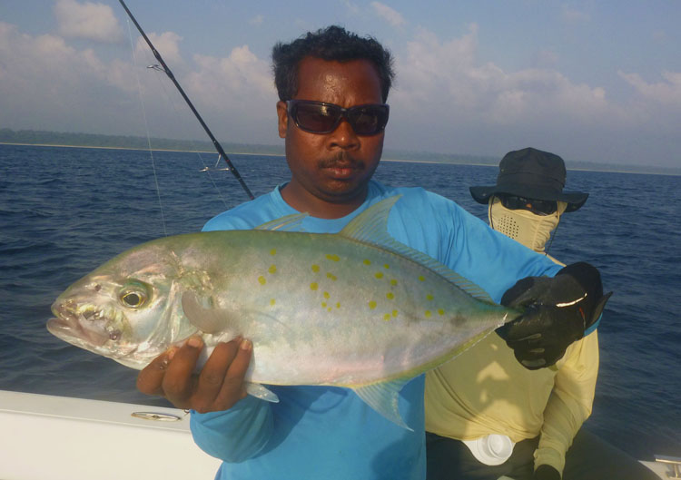 No29_Bludger-trevally_fishing_light-jigging_andaman_Shimano-Stella_gamefishingasia_boat_big-fish_gtpopping_boat-charter_angler_Suresh-Kumar