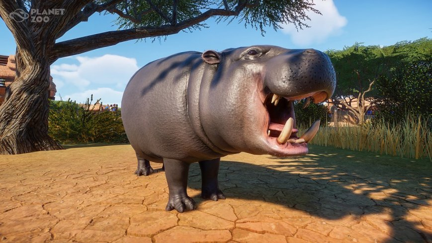 planet zoo game it